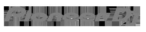 logo of Pioneer